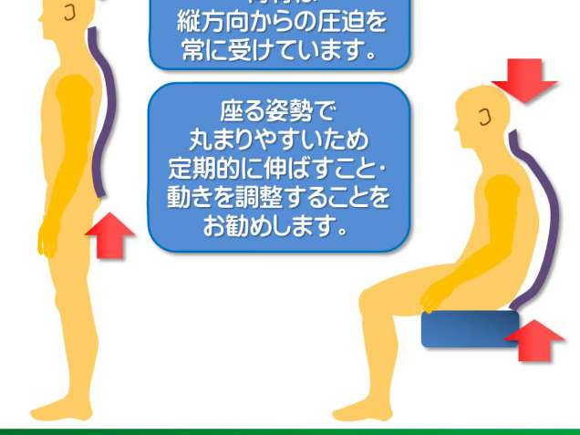 富士見台カイロプラクティックセンターの写真3