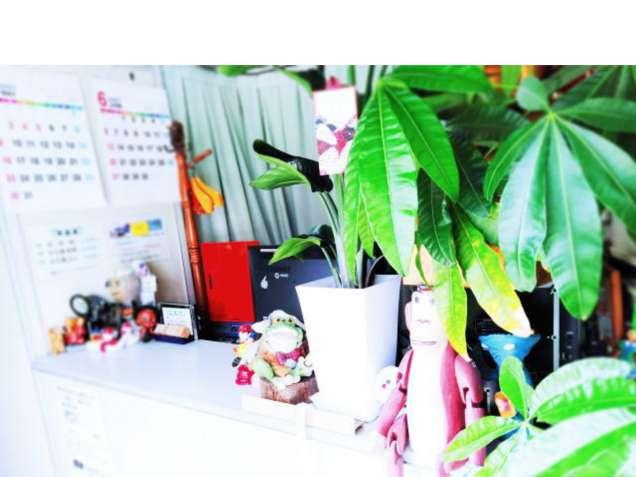 ふじの整体院 【広島市南区皆実町・翠町・宇品】の写真3
